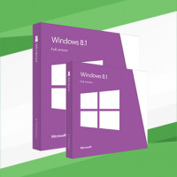 Windows 8.1 (single language)