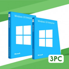 Windows 10 Enterprise LTSC 2019 3PC