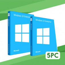 Windows 10 Enterprise LTSC 2019 5PC